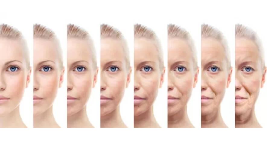 El envejecimiento de la piel